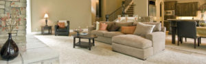 Carpeted Living Area